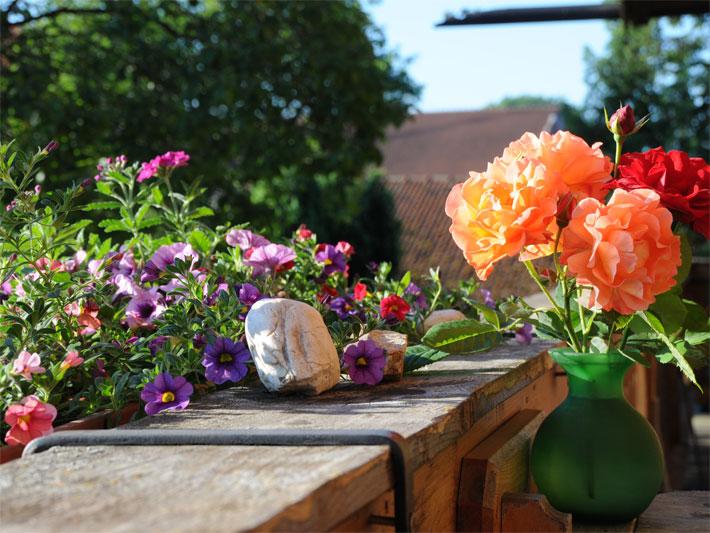 Balkonblumen - Terrassenblumen - Topfblumen Balkonblumen Sonnige Standorte Gestaltungsbeispiele